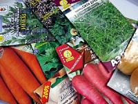 Сроки годности семян. Можно ли сажать просроченные семена?